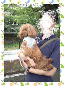 2012-07-08_17.33.50.jpg